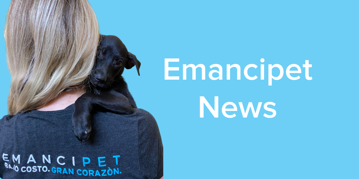 Emancipet Veterinary Clinics - News
